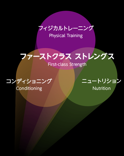 ファーストクラスストレングスの 3要素の関係